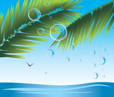 Free Palm Branches With Bubbles. Seascape Royalty Free Stock Image - 20335366
