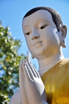 Free Buddist Monk Statue Stock Photos - 20335553