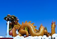 Free Colorful Dargon Statue Stock Image - 20336011