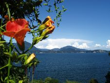 Free View From Isola Bella Lago Maggiore Italy Royalty Free Stock Images - 20339119