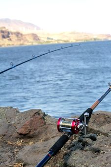 Free Sturgeon Fishing Poles Stock Photo - 20339670