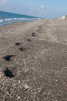 Free Footprints Stock Photos - 20339903