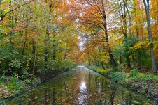 Free A River In A Forrest During Fall Royalty Free Stock Photo - 20339995