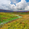 Free Colorful Autumn Landscape Stock Photos - 20348253