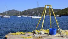 Free Sea Crane Royalty Free Stock Image - 20341556