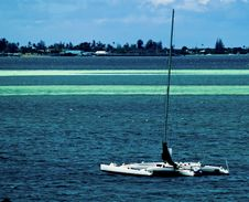 Free Catamaran On Blue Stock Photography - 20344012