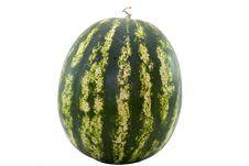 Free Watermelon Royalty Free Stock Image - 20345086