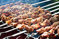 Free Fried Meat On The Grill Stock Photos - 20353633