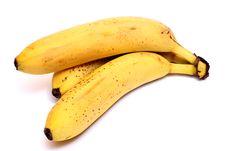 Free Bananas Stock Photography - 20350502