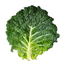 Free Savoy Cabbage Royalty Free Stock Photo - 20352185