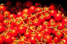 Free Red Tomato Royalty Free Stock Photo - 20353655