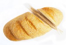 Free Bread Isolated Royalty Free Stock Image - 20354716