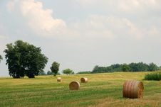 Free Rolls Of Hay Royalty Free Stock Image - 20354726