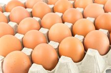 Group Of Eggs Royalty Free Stock Image