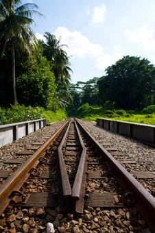 Free Railway Through A Forested Area Royalty Free Stock Images - 20357209