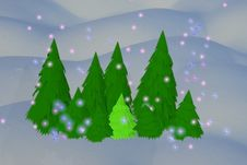 Free Green Fur-trees And Snowflakes Stock Photos - 20357963