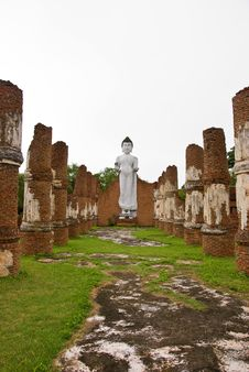 Free Statues Of Buddha Royalty Free Stock Photography - 20358007