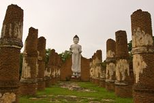 Free Statues Of Buddha Stock Images - 20358044