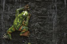 Free Frog Statue Royalty Free Stock Image - 20358896