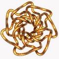 Free Knot Illustration Stock Photo - 20364190