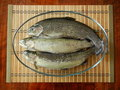 Free Three Trout Fishes In A Glass Bowl Stock Photos - 20368143