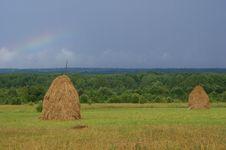 Free Hay, Vologda Region, Russia Stock Image - 20361091