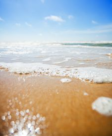 Free Beach Stock Image - 20364751