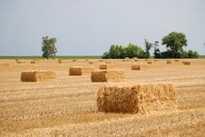Balls Of Straw Royalty Free Stock Images