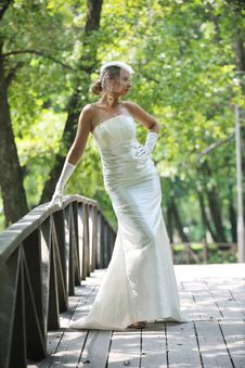 Free Beautiful Bride Outdoor Royalty Free Stock Image - 20367676