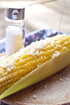 Free Corn Stock Photos - 20369343
