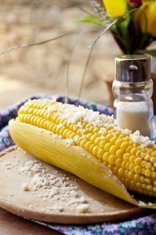 Free Corn Royalty Free Stock Photography - 20369347