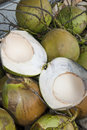 Free Coconuts Stock Photography - 20371512