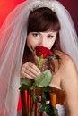 Free Bride With Veil Stock Photos - 20375873