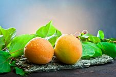 Free Apricot On Wood And Background Leaf Royalty Free Stock Photo - 20370785