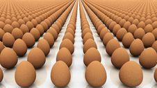 Free Eggs Stock Photography - 20372902
