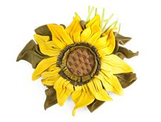 Free Sunflower Royalty Free Stock Image - 20373606