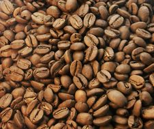 Free Coffee Beans Closeup Royalty Free Stock Images - 20374049