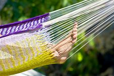 Free Feet In A Colorful Hammock Stock Images - 20374614