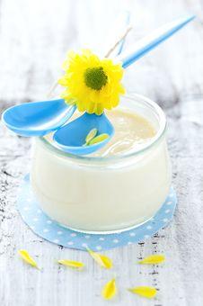 Free Fresh Vanilla Pudding Royalty Free Stock Image - 20375426