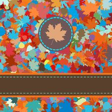 Free Colorful Backround Of Fallen Autumn Leaves. EPS 8 Stock Photo - 20376300