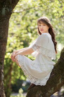 Free Sitting On A Tree Stock Photos - 20378363