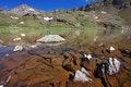 Free Icy Lakes Royalty Free Stock Image - 20381976