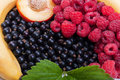 Free Fresh Fruits Stock Image - 20383601