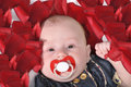 Free Baby S Face With The Red Dummy Stock Photo - 20387030