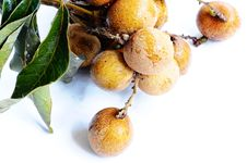 Free Longan Fruits Stock Images - 20382794