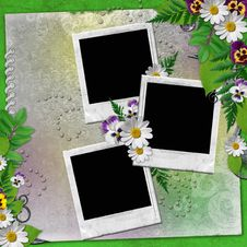 Frame For Three Photos With Colorful Flowers