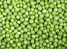 Free Fresh And Green Peas Royalty Free Stock Photos - 20383598