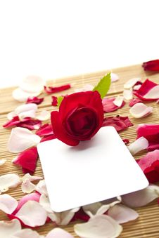 Free Card And Roses Stock Photos - 20383763