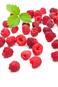 Free Fresh Raspberry And Green Leaf Stock Photos - 20383773