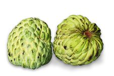 Free Custard Apple Royalty Free Stock Photography - 20384177